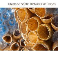 """Ghizlane Sahliexpose """"Histoires de tripes"""" à Marrakech (Mar)"""